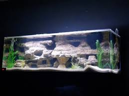 Aquarium Decor Ideas Ideas About Fish Aquarium Decorations On Pinterest Tanked