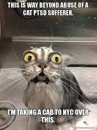 Ptsd Meme - this is way beyond abuse of a cat ptsd sufferer i m taking a cab to
