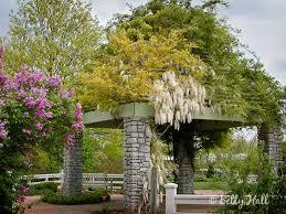 native plants of kentucky the arboretum lexington kentucky state botanical garden of
