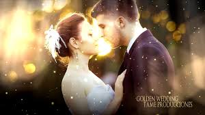 free template sony vegas pro 11 12 13 golden wedding ll