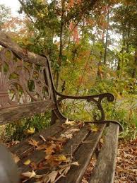 Park Bench Scene Best 25 Park Benches Ideas On Pinterest Autumn Leaves Falling