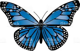 blue monarch butterfly stock vector more images of aircraft