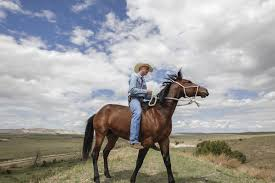 South Dakota How Far Can A Horse Travel In A Day images Pine ridge rancher turned 39 rider 39 star embracing newfound fame jpg