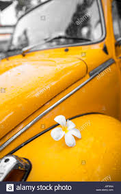 volkswagen yellow car vehicle retro vintage yellow volkswagen beetle parked at the roadside thailand