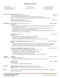 resume format sample for job application examples of resumes best photos free job printable employment 89 excellent mock job application examples of resumes