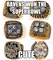 Ravens Steelers Memes - ravens won the superbowl cute steelers quickmeme
