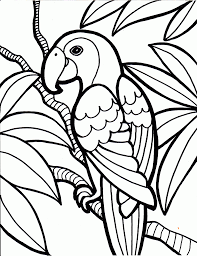4 Fancy Parrot Coloring Page Ngbasic Com Color Page