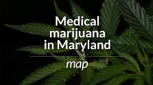 Colorado Marijuana Dispensary Map by Maryland Prepares For The Medical Marijuana Business Baltimore Sun