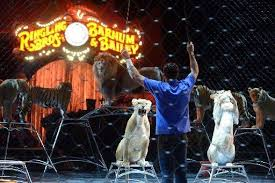 Barnes And Bailey Circus Last Chance To See Ringling Bros Circus In Conn Connecticut Post