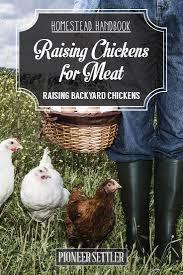 569 best raising chickens u0026 poultry images on pinterest raising