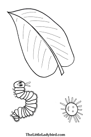 free the hungry caterpillar coloring pages thelittleladybird com