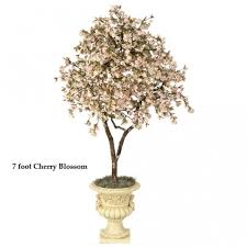 6 foot cherry blossom tree colors w 9420