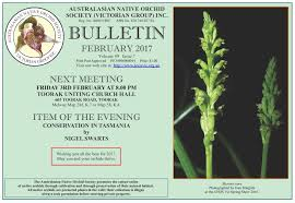 society for growing australian native plants australasian native orchid society anos victoria australia