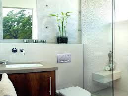 Guest Bathroom Ideas Pictures Modern Half Bathroom Design Large Size Of Guest For Impressive
