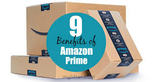 black friday litter boxes amazon amazon archives mylitter one deal at a time