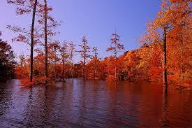 Rhode Island wildlife tours images Rhode island fall foliage tour jpg