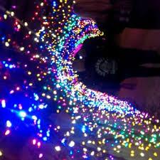 zoo lights 152 photos u0026 80 reviews festivals 6200 hermann