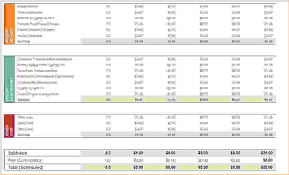 It Budget Template Excel 3 Project Budget Template Excel Procedure Template Sle