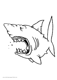 Open Jaw Shark Color Page Coloring Pages Sharks Printable