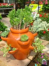 82 best urban container gardening images on pinterest urban