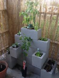 urban garden cinder block garden small space gardening ideas
