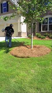 How To Mulch Flower Beds How To Trim Around Your Trees And Flower Beds Youtube