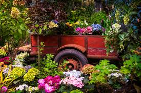 trailer full of flowers photograph by garry