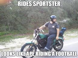 Harley Meme - some people got butt hurt over my sportster meme to make it up