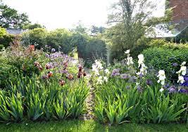 garden visit flower borders in a colorful english garden