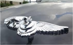 logo eagle standing showtrix