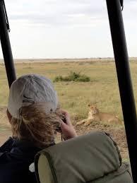 safari jeep craft safari in the masai mara rachel teodoro
