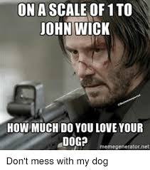 John Meme - on a scale of 1 to john wick how much do you love your dog