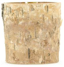 Birch Bark Vases Small Birch Bark Cylinder Vase Rustic Vases By Serene Spaces