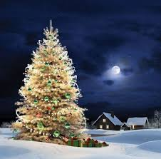106 best all lit up for christmas images on pinterest