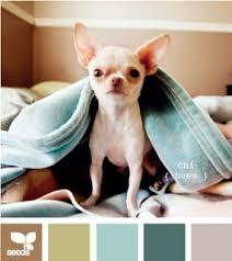 the 25 best color palette generator ideas on pinterest color