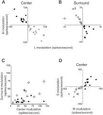 spatial structure cone inputs color cells alert macaque