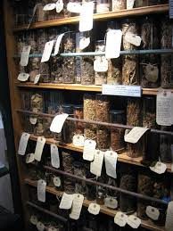 Wiccan Home Decor Omg This Is My Dream Witch Pantry Our Dream Pinterest
