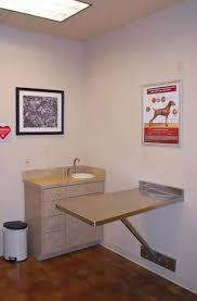 veterinary clinic design ideas veterinary clinic interior design
