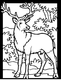 19 coloring images coloring pages