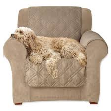 Pet Chair Covers Buy Sofa And Chair Covers From Bed Bath U0026 Beyond