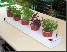 Grow Herbs Indoors by 46 Best Growing Herbs With Hydroponics Images On Pinterest