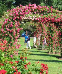 Sunken Gardens Family Membership Blog U2014 Enchanted Gardens