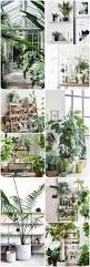 Green Home Decor Home Decor Inspo A Touch Of Green With All My Affection