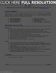 Sample Executive Summary Resume by Executive Summary Sample For Resume Free Resume Example And