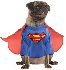 pet costumes selection of pet costumes for and