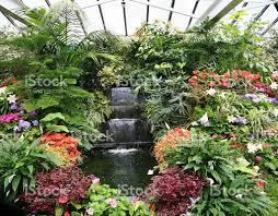 beautiful indoor tropical gardens stock photo 172172293 istock