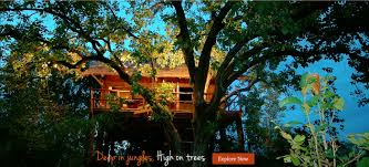 luxury wildlife resorts hotel in bandhavgarh national park
