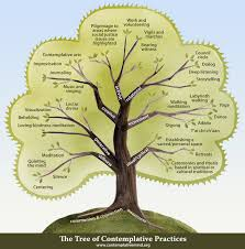 the tree of contemplative practices the center for contemplative