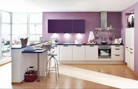 cuisine couleur violet peinture cuisine et combinaisons de couleurs en 57 idées fascinantes