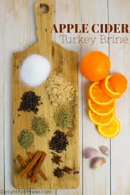 apple cider turkey brine delightful e made